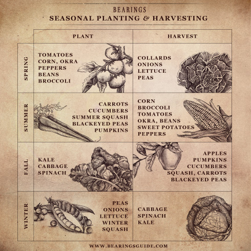 Seasonal Planting and Harvesting by Bearings