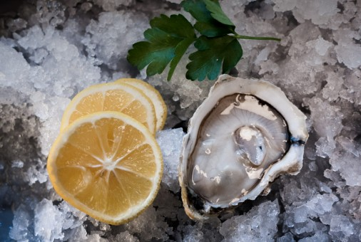 An Oyster Overview